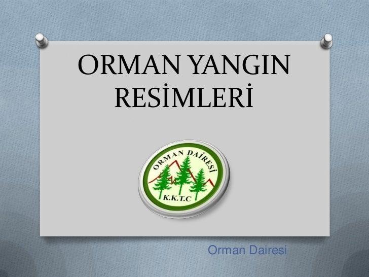 ORMAN YANGIN  RESİMLERİ       Orman Dairesi