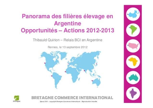Panorama des filières élevage en           ArgentineOpportunités – Actions 2012-2013    Thibauld Quirion – Relais BCI en A...