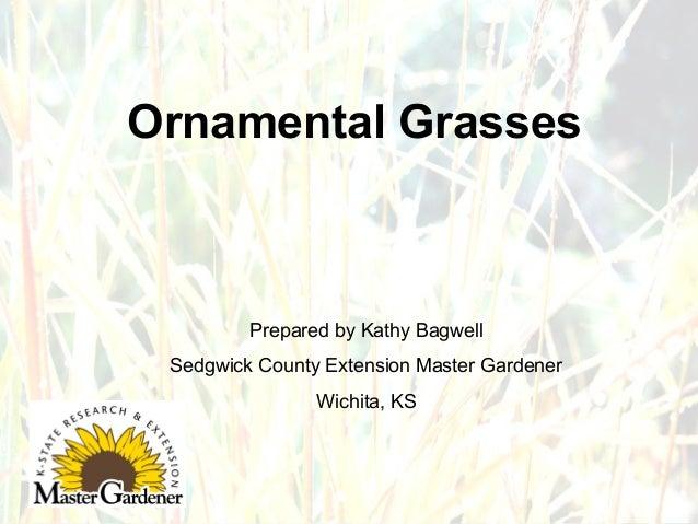 Ornamental Grasses  Prepared by Kathy Bagwell Sedgwick County Extension Master Gardener Wichita, KS