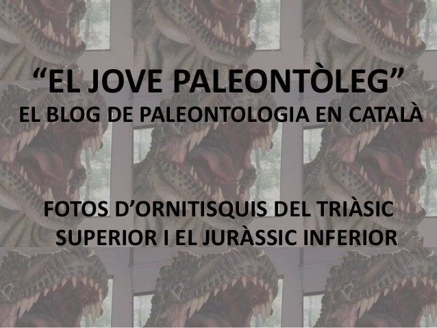 """""""EL JOVE PALEONTÒLEG"""" EL BLOG DE PALEONTOLOGIA EN CATALÀ  FOTOS D'ORNITISQUIS DEL TRIÀSIC SUPERIOR I EL JURÀSSIC INFERIOR"""