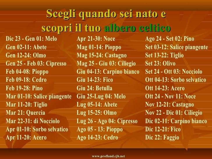 <ul>Scegli quando sei nato e scopri il tuo  albero celtico </ul><ul>Dic 23 - Gen 01: Melo Gen 02-11: Abete Gen 12-24: Olmo...