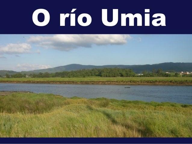 O río Umia