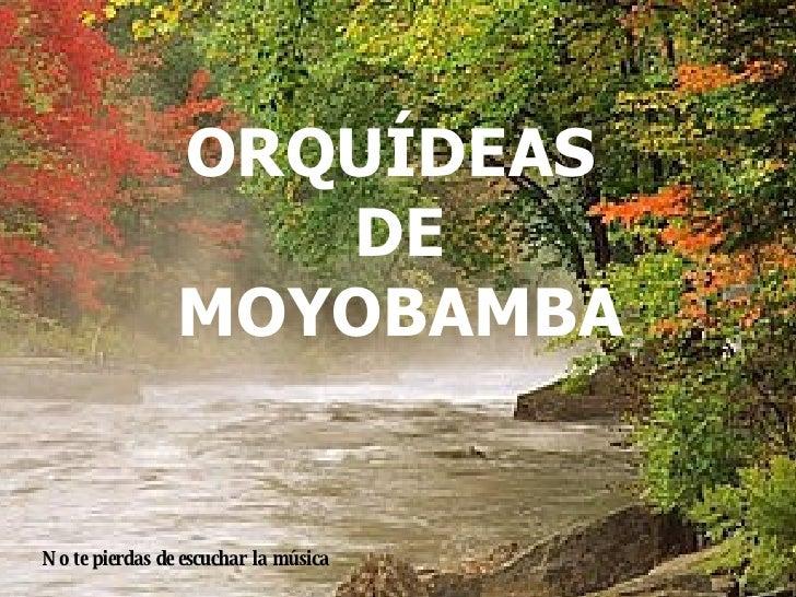 NO TE OLVIDESDE SONREIR PESE A TODO... ORQUÍDEAS  DE MOYOBAMBA No te pierdas de escuchar la música