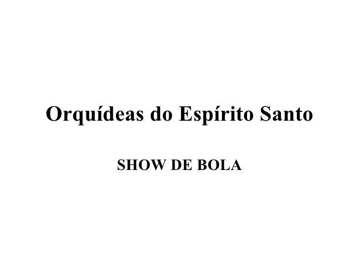 Orquídeas do Espírito Santo SHOW DE BOLA