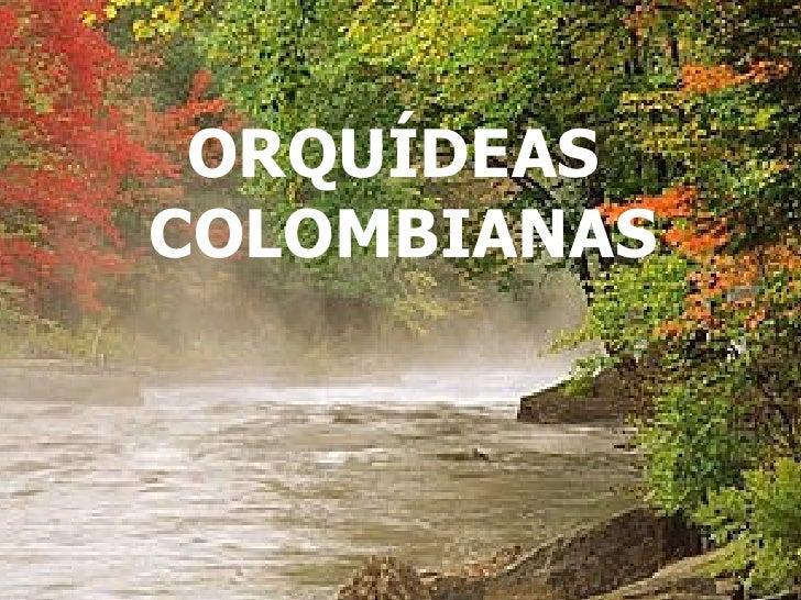NO TE OLVIDESDE SONREIR PESE A TODO... ORQUÍDEAS  COLOMBIANAS