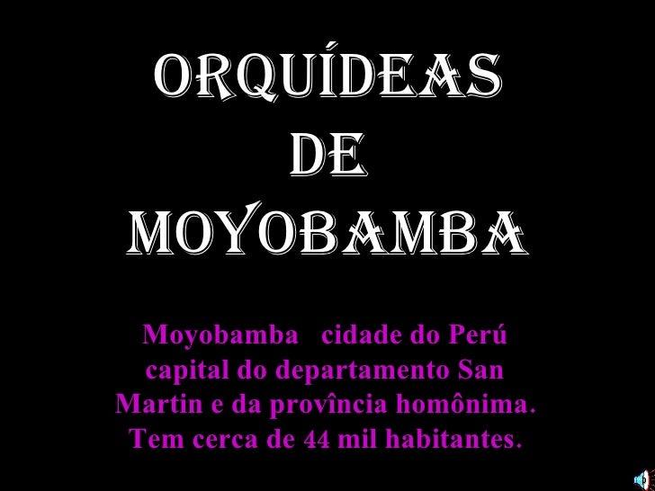 Moyobamba  cidade do Perú capital do departamento San Martin e da provîncia homônima. Tem cerca de 44 mil habitantes. Orqu...