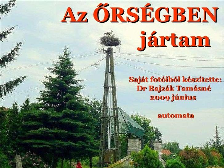 Oud of Mooi ???? Az ŐRSÉGBEN jártam Saját fotóiból készítette: Dr Bajzák Tamásné 2009 június automata