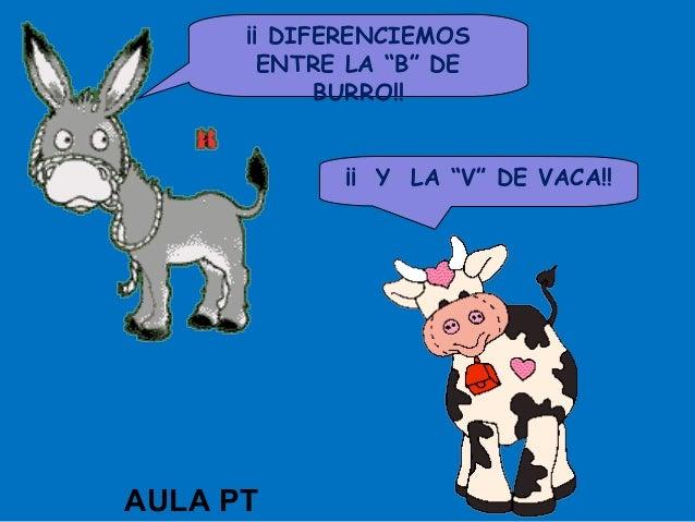 """¡¡ DIFERENCIEMOS        ENTRE LA """"B"""" DE            BURRO!!             ¡¡ Y LA """"V"""" DE VACA!!AULA PT"""