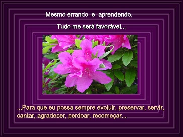 Mesmo errando  e  aprendendo,  Tudo me será favorável... ...Para que eu possa sempre evoluir, preservar, servir, cantar, a...
