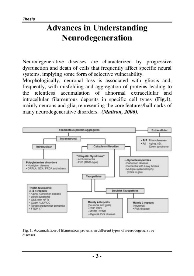 Research on oxidative stress