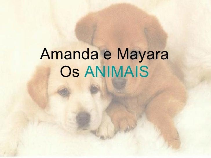 Amanda e Mayara Os  ANIMAIS