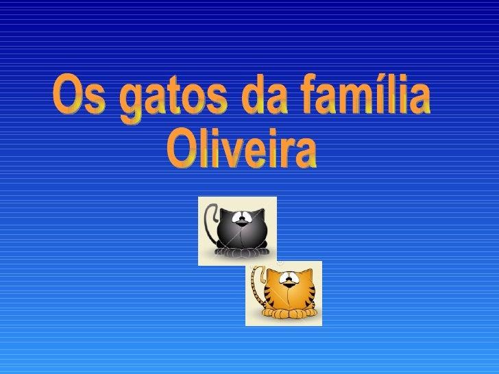Os gatos da família Oliveira