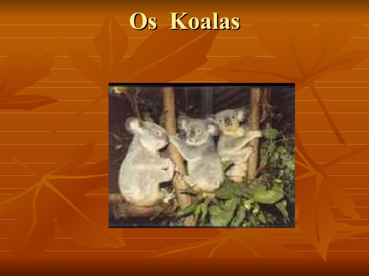 Os  Koalas