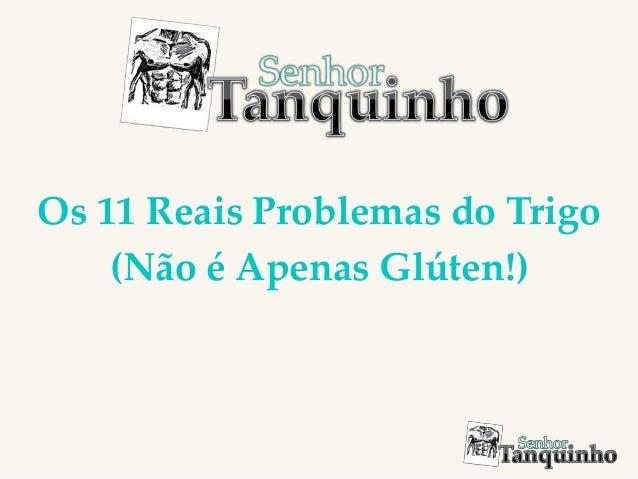 Os 11 Reais Problemas do Trigo (Não é Apenas Glúten!)