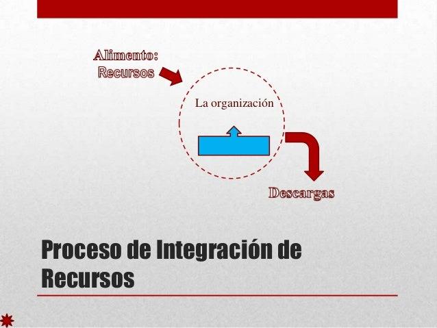 La organización  Proceso de Integración de Recursos