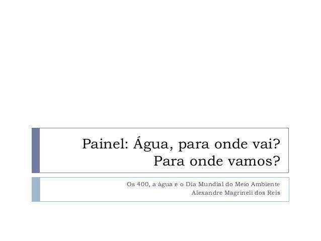 Painel: Água, para onde vai?Para onde vamos?Os 400, a água e o Dia Mundial do Meio AmbienteAlexandre Magrineli dos Reis