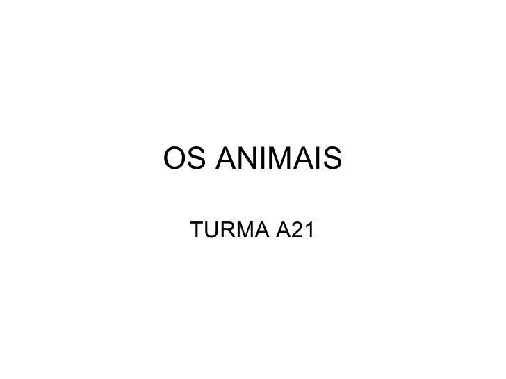 OS ANIMAIS TURMA A21