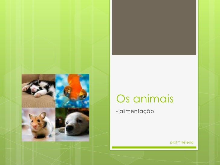 Os animais- alimentação                prof.ª Helena