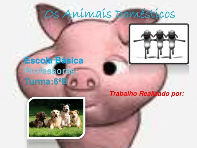 Escola Básica Professoras: Turma:6ºB Trabalho Realizado por: Os Animais Domésticos