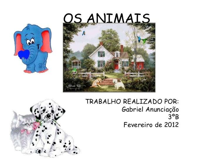 OS ANIMAIS  TRABALHO REALIZADO POR:          Gabriel Anunciação                         3ºB           Fevereiro de 2012