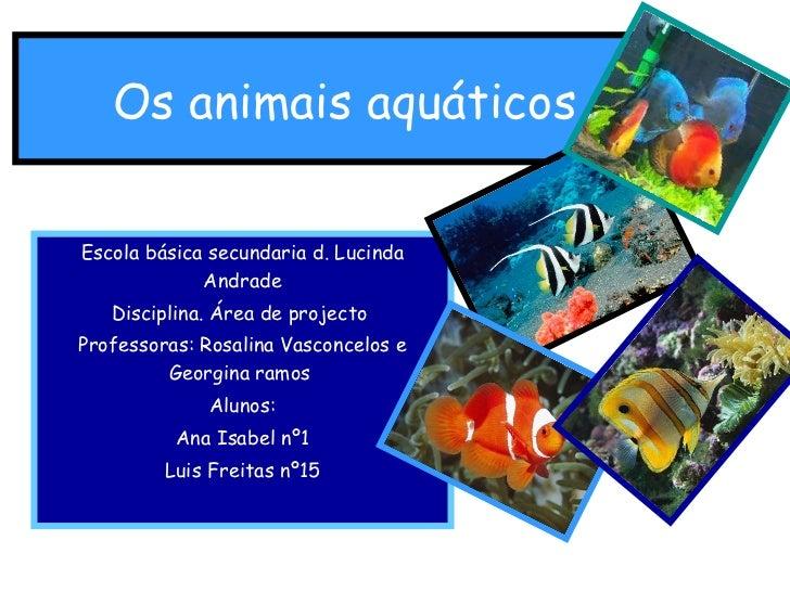 Os animais aquáticos   Escola básica secundaria d. Lucinda Andrade Disciplina. Área de projecto  Professoras: Rosalina Vas...
