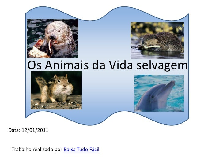 Os Animais da Vida selvagem<br />Data: 12/01/2011<br />Trabalho realizado por Baixa Tudo Fácil<br />