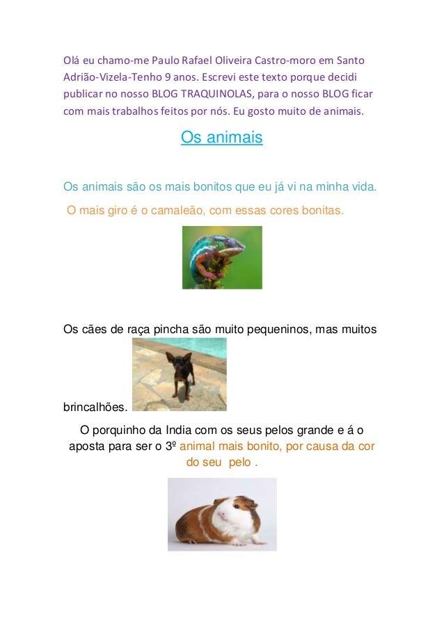 Olá eu chamo-me Paulo Rafael Oliveira Castro-moro em Santo  Adrião-Vizela-Tenho 9 anos. Escrevi este texto porque decidi  ...