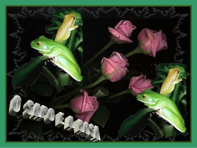 Era uma vez uma rosa muito bonita,que se sentia envaidecida ao saber queera a mais linda do jardim.  Mas começou a percebe...