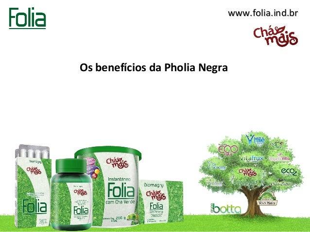 www.folia.ind.brOs benefícios da Pholia Negra