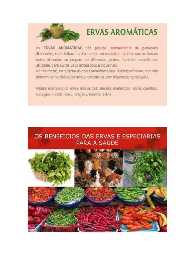 Os benefícios das ervas aromáticas Slide 2