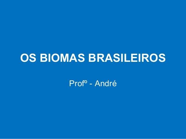 OS BIOMAS BRASILEIROSProfº - André