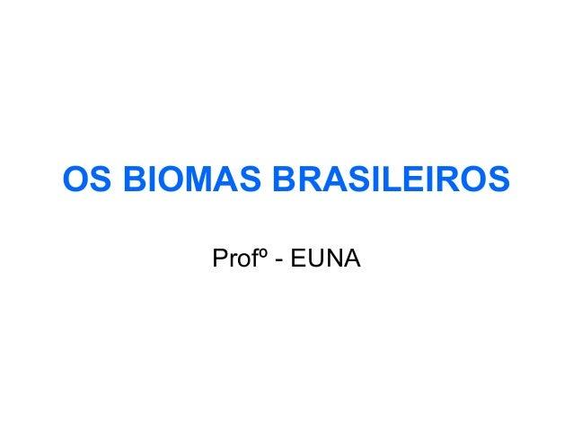 OS BIOMAS BRASILEIROS Profº - EUNA