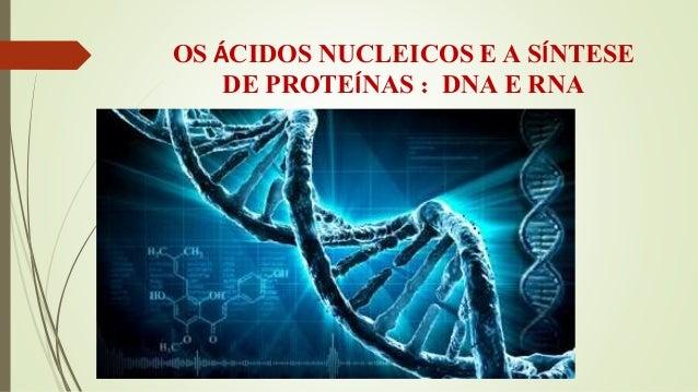 OS ÁCIDOS NUCLEICOS E A SÍNTESE  DE PROTEÍNAS : DNA E RNA