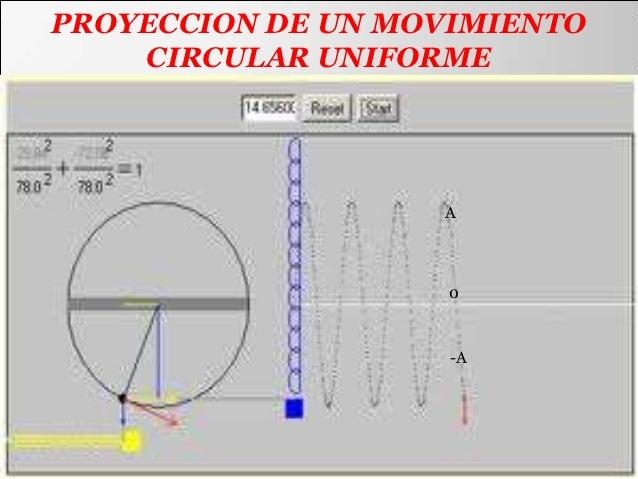 PROYECCION DE UN MOVIMIENTO    CIRCULAR UNIFORME                   A                    0                    -A