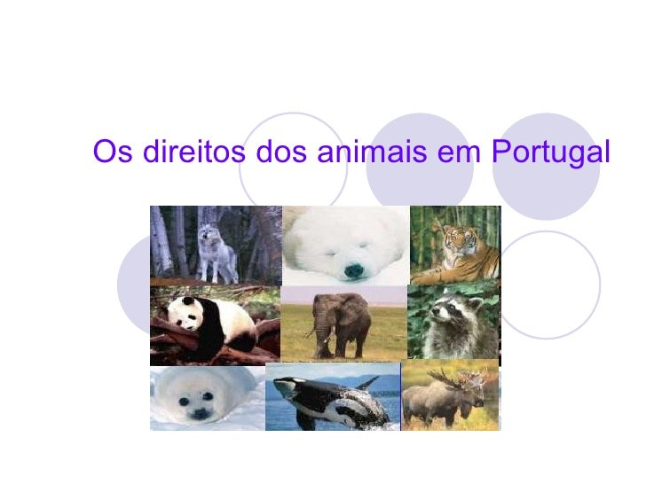 Os direitos dos animais em Portugal