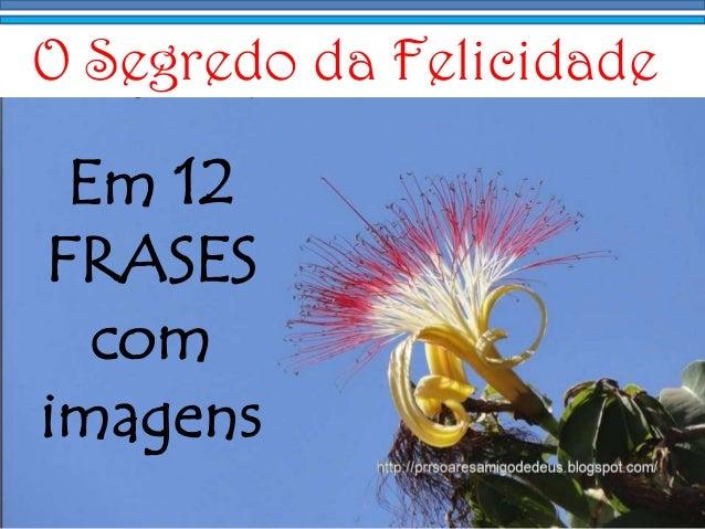 Imagens E Frases: O Segredo Da Felicidade Em 12 Frases Com Imagens