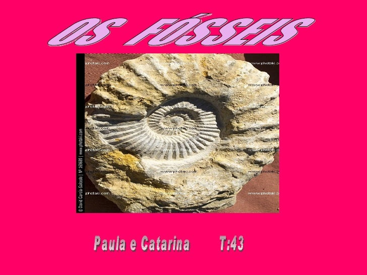 O que é?• Os fósseis são registros arqueológicos  deixados no solo , são restos de animais  e plantas que se conservam de ...