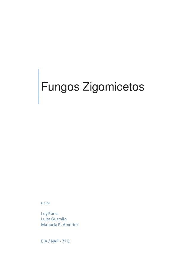 Fungos Zigomicetos Grupo Luy Parra Luiza Gusmão Manuela P. Amorim EIA / NAP - 7º C