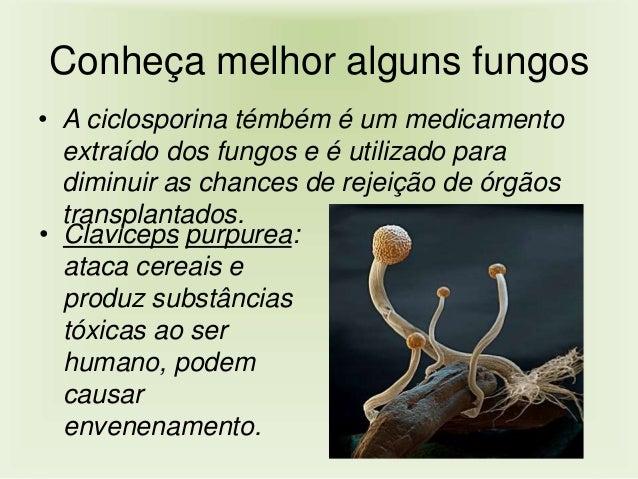 Se é possível livrar-se de um fungo em pregos de pernas