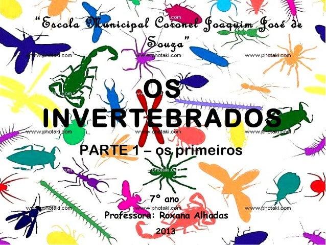 """OS INVERTEBRADOS PARTE 1 – os primeiros """"Escola Municipal Coronel Joaquim José de Souza"""" 7º ano Professora: Roxana Alhadas..."""