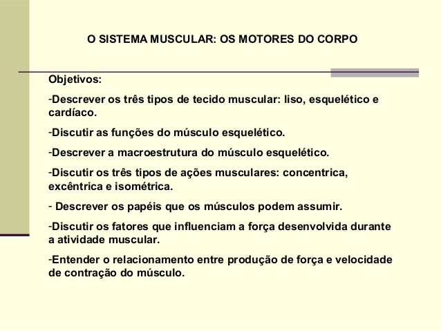 O SISTEMA MUSCULAR: OS MOTORES DO CORPO Objetivos: -Descrever os três tipos de tecido muscular: liso, esquelético e cardía...