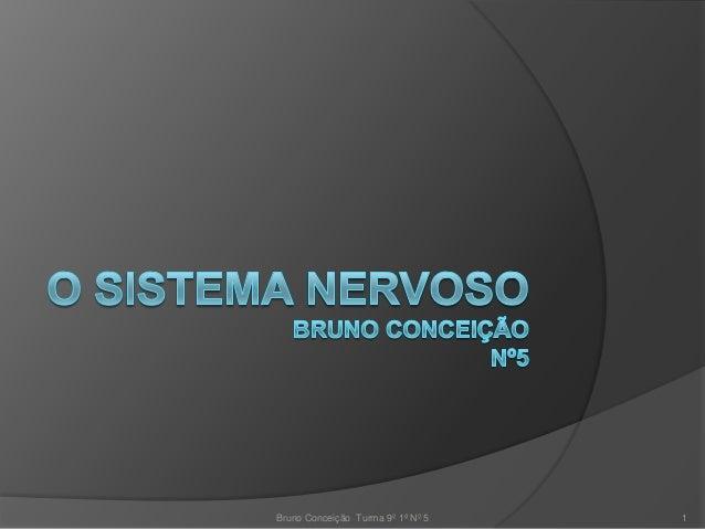 Bruno Conceição Turma 9º 1ª Nº 5   1
