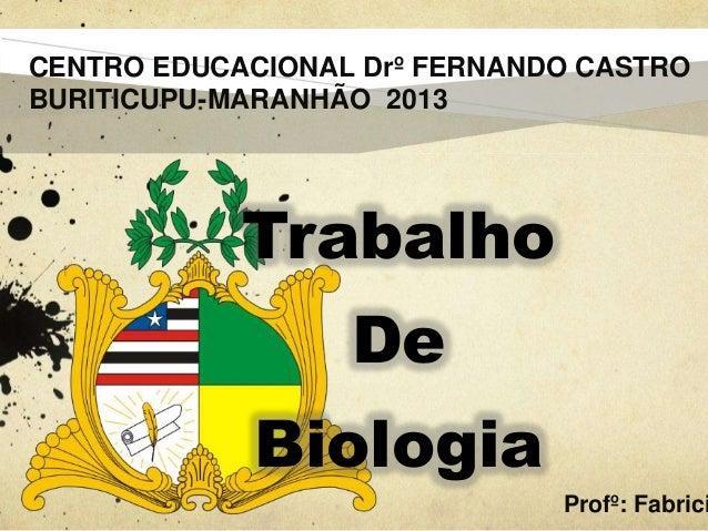 CENTRO EDUCACIONAL Drº FERNANDO CASTRO BURITICUPU-MARANHÃO 2013  Trabalho De Biologia  Profº: Fabrici