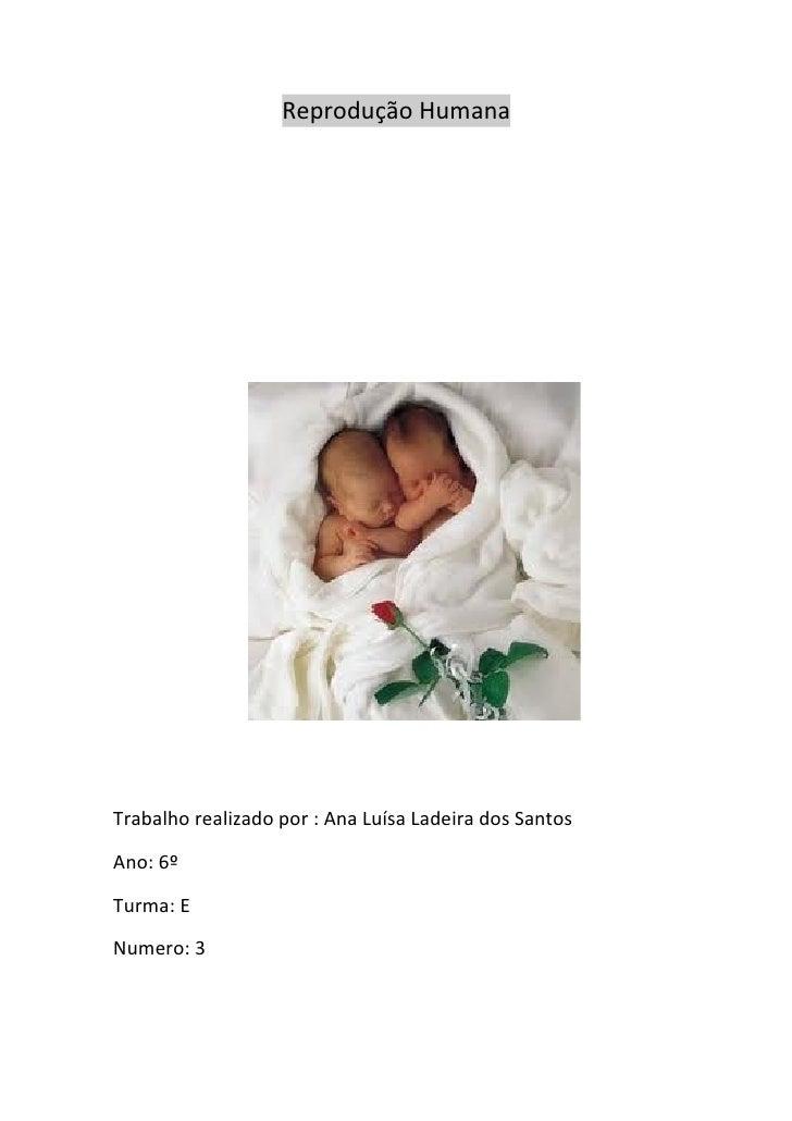 Reprodução HumanaTrabalho realizado por : Ana Luísa Ladeira dos SantosAno: 6ºTurma: ENumero: 3