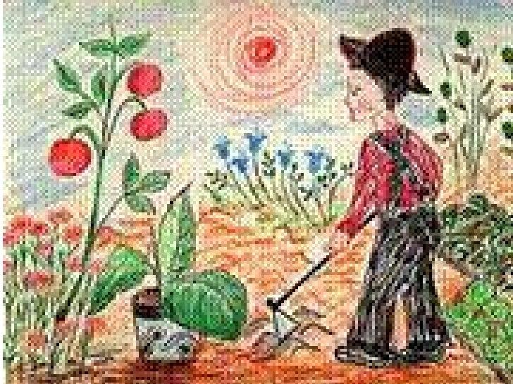 Os legumes coloridos