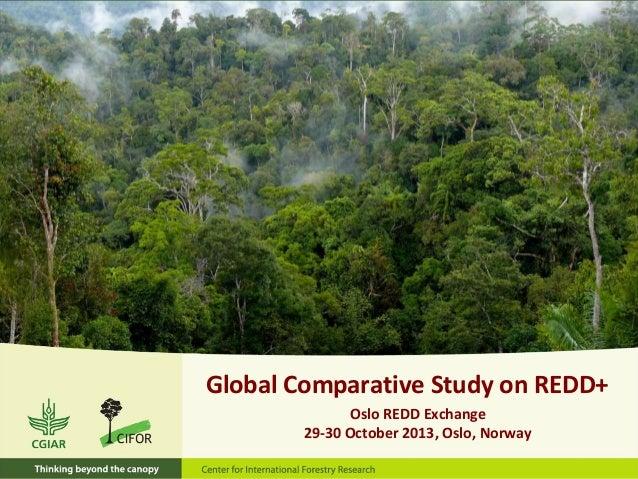 Global Comparative Study on REDD+ Oslo REDD Exchange 29-30 October 2013, Oslo, Norway