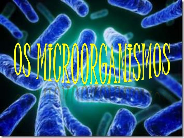 O que são microorganismos? • Os Microrganismos são uma forma de vida que não pode ser visualizada sem auxílio de um micros...