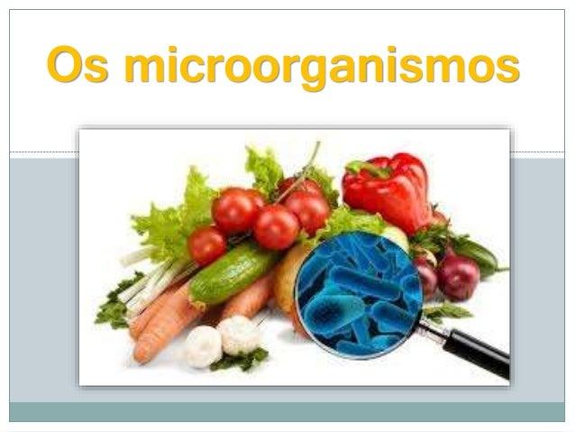 Os microorganismos