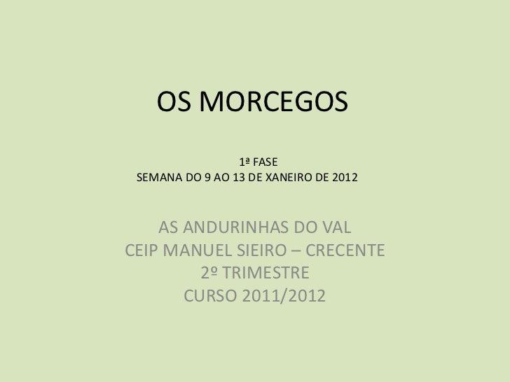 OS MORCEGOS                 1ª FASE SEMANA DO 9 AO 13 DE XANEIRO DE 2012    AS ANDURINHAS DO VALCEIP MANUEL SIEIRO – CRECE...