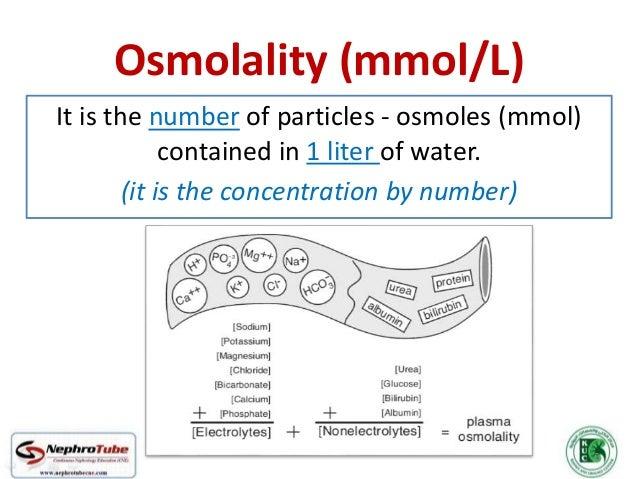 Osmoregulation (Urine Dilution & Concentration) - Dr. Gawad Slide 2